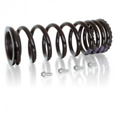 Coil spring conversion kit rear Disco 2